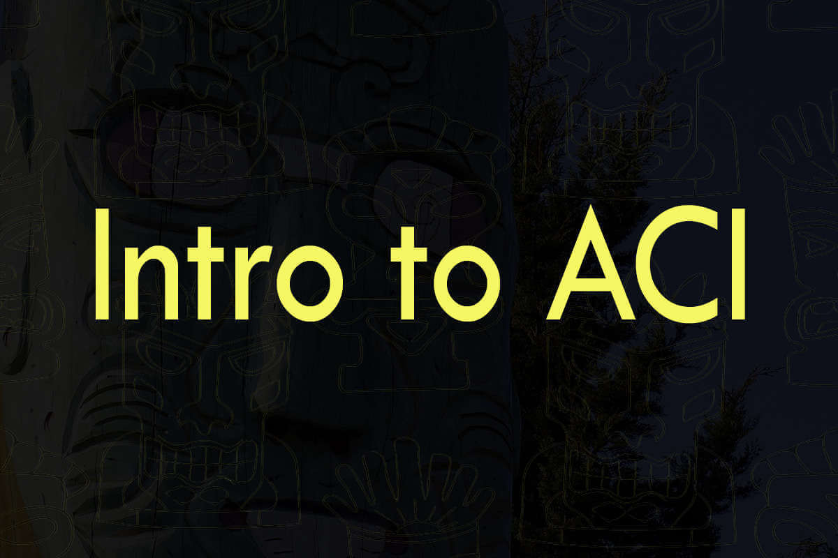 Post about intro to ACI