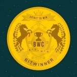 Bitwinner logo