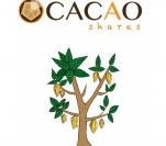 Cacaoshares logo