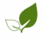 Woodscoin logo