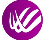 BitWings logo
