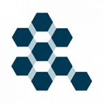 Irbis Network (IBS) logo