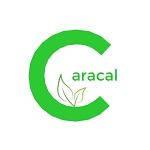 Caracal Coin logo