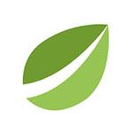 Bitfinex logo