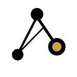 Anyon logo