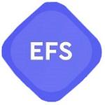 EnForm Storage logo